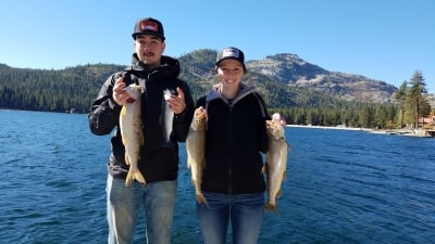 Donner lake fish report